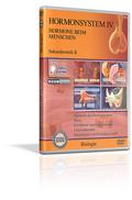 Hormonsystem IV - Hormone beim Menschen - Schulfilm (DVD)