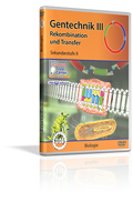 Gentechnik III - Rekombination und Transfer - Schulfilm (DVD)