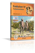 Evolution IV - Humanevolution - Schulfilm (DVD)