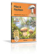Pilze & Flechten - Schulfilm (DVD)